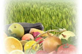 Enzymes for Farming and Agriculture